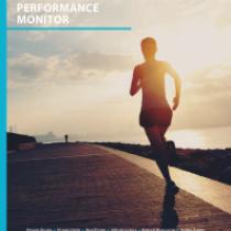 2017 Preqin Alternative Assets Performance Monitor