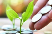 Aandelenrisico binnen individueel Defined Contribution