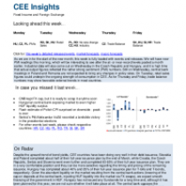CEE Insights | Fixed Income | Central and Eastern Europe