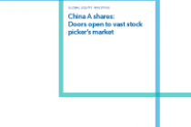 China A shares: Doors open to vast stock picker's market