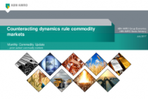 Counteracting dynamics rule commodity markets