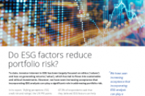 Do ESG factors reduce portfolio risk?
