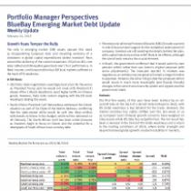 Emerging Market Debt Update