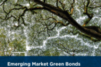 Emerging Market Green Bonds Report 2018
