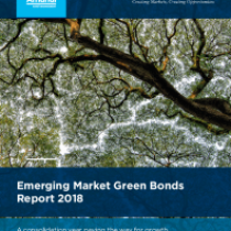 Emerging Market Green Bonds Report 2018