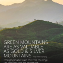 Emerging markets and ESG: The challenge, the response and the opportunity