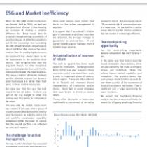 ESG and Market Inefficiency