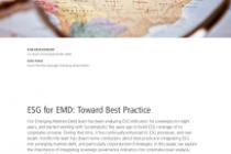 ESG for EMD: Toward Best Practice