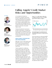 Falling Angels? Credit Market Risks and Opportunities