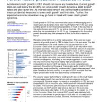 Further macro prudential measures in CEE