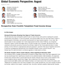 Global Economic perspective