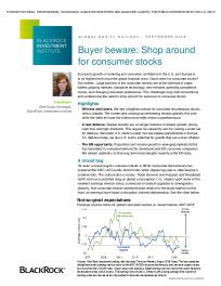 Global equity outlook