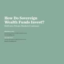 How Do Sovereign WealthFunds Invest?
