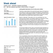 Lasting global implications from lira drop seem unlikely