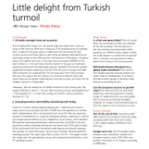 Little delight from Turkish turmoil