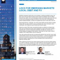 Loco For Emerging Markets Local Debt And Fx