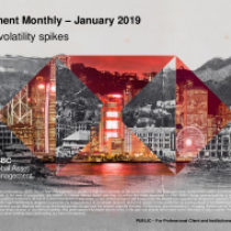 Market volatility spikes