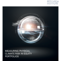 Measuring physical climate risk in equity portfolios