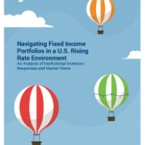 Navigating Fixed Income Portfolios in a U.S. Rising Rate Environment