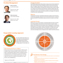 NN Global Equity Impact Opportunities
