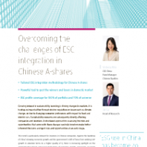 Overcoming the challenges of ESG integration in Chinese A-shares