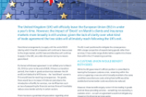 Preparing For Brexit: An Eu Perspective
