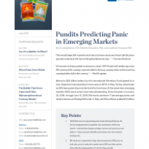 Pundits Predicting Panic in Emerging Markets
