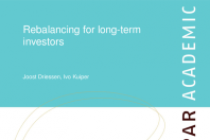 Rebalancing for long-term investors
