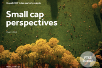 Small cap perspectives