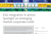 Spotlight on emerging market corporate credit