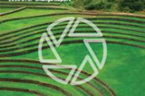 Stewardship, Transition and Engagement Program for Change