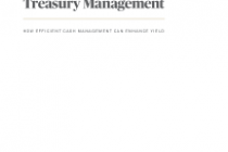 The Value of Active Treasury Management