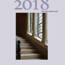 The Yale Endowment