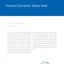 Toward Dynamic Stress Tests