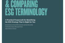 Understanding & Comparing Esg Terminology