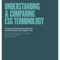 Understanding & Comparing Esg Terminology