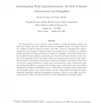 Understanding Weak Capital Investment: the Role of Market Concentration and Intangibles