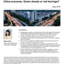 China economy: Green shoots or red herrings?