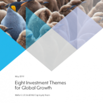 Eight Investment Themes for Global Growth