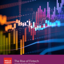 The Rise of Fintech And the frontier of finance