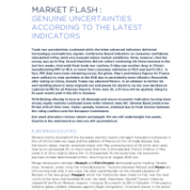 Genuine uncertainties according to the latest indicators