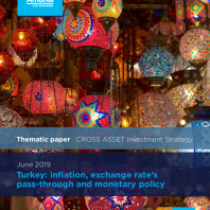 Turkey: inflation, exchange rate's pass-through and monetary policy