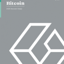 Bitcoin 2019 Investor Study