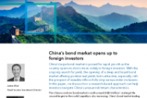 China's bond market opens up to foreign investors