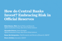 How do Central Banks Invest? Embracing Risk in Official Reserves