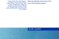 Macroprudential stress test of the euro area banking system
