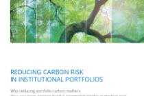 Reducing Carbon Risk In Institutional Portfolios
