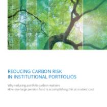 Reducing Carbon Risk In Institutional Portfolios