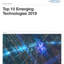 Insight Report 10 Emerging Technologies