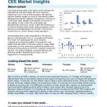 CEE Market Insights